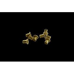 Small brass Eyelets